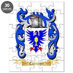 Carnegie Puzzle