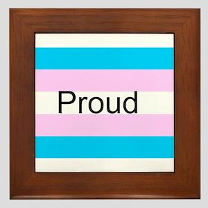 Transgenderd Pride Framed Tile