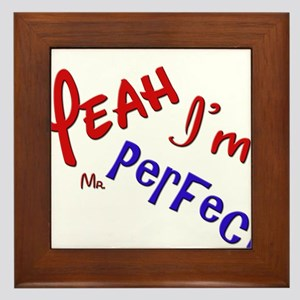 I'm Mr Perfect Funny Design Framed Tile