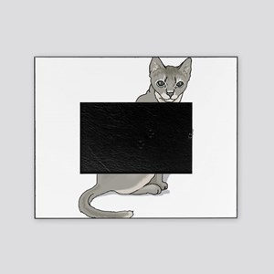 grey-kitten2,png Picture Frame