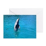 Dancing Dolphin - Greeting Cards (Pk of 10)