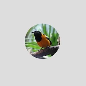 Not Sure What Bird Mini Button