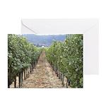 Napa Valley CA - Greeting Cards (Pk of 10)