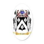 Caplot Oval Car Magnet