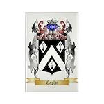 Caplot Rectangle Magnet (10 pack)