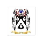 Caplot Square Sticker 3