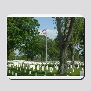 Cost of Freedom Mousepad