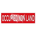 Occupied NDN Land Bumper Sticker