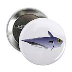 Grenadier Deep Sea fish (Annas Antarctica) 2.25