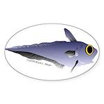 Grenadier Deep Sea fish (Annas Antarctica) Sticker