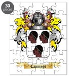 Cannings Puzzle