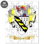 Cane Puzzle