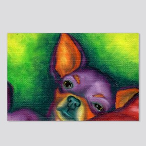 Lazy Chihuahua Postcards (Package of 8)