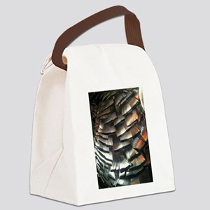 Turkey Feathers Canvas Lunch Bag