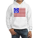 PeaceFlag Hooded Sweatshirt