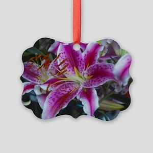 Stargazer Lily Magenta Pink Picture Ornament