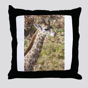 Baby Masai Giraffe Throw Pillow