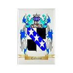 Calnane Rectangle Magnet (100 pack)
