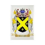 Callcutt Rectangle Magnet (100 pack)