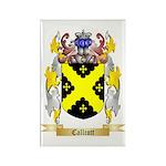 Callcott Rectangle Magnet (100 pack)