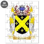 Callcott Puzzle