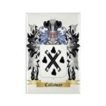 Callaway Rectangle Magnet (100 pack)