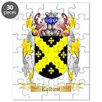 Caldicot Puzzle
