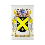 Calcott Rectangle Magnet (100 pack)