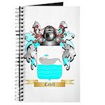 Cahill Journal