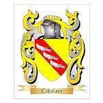 Cahalane Small Poster