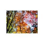 Autumn Trees Oil Painting 5'x7'Area Rug