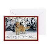Golden retriever Greeting Cards (10 Pack)