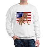 Red Nose Pit Bull USA Flag Sweatshirt