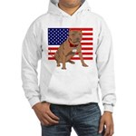 Red Nose Pit Bull USA Flag Hooded Sweatshirt