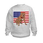 Red Nose Pit Bull USA Flag Kids Sweatshirt