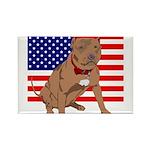 Red Nose Pit Bull USA Flag Rectangle Magnet