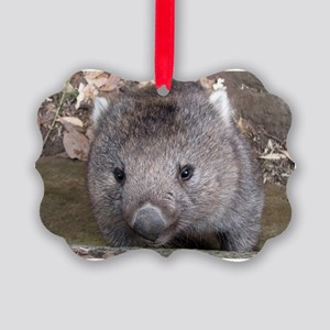 Young Wombat - Picture Ornament
