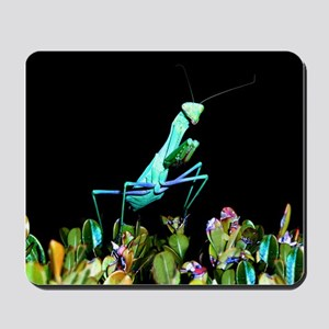 Helaine's Praying Mantis 2 Mousepad