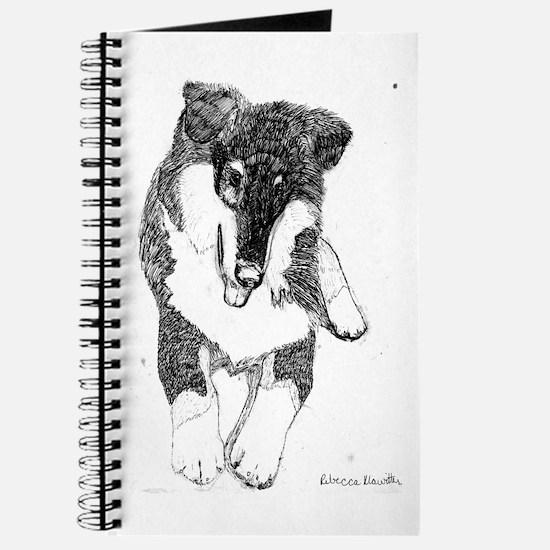 Tri Collie Pup Journal