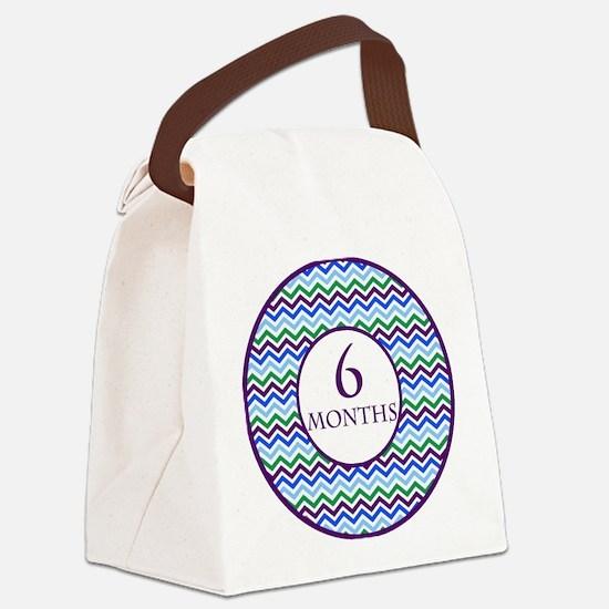 6 Months Chevron Milestone Canvas Lunch Bag