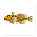 Pacific Sculpin fish Square Car Magnet 3