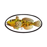 Pacific Sculpin fish Patches