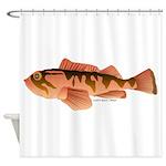 Cabazon Rockfish Scorpionfish Shower Curtain