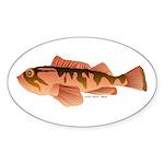 Cabazon Rockfish Scorpionfish Sticker