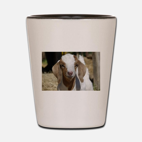 Cutie Kid Goat Shot Glass
