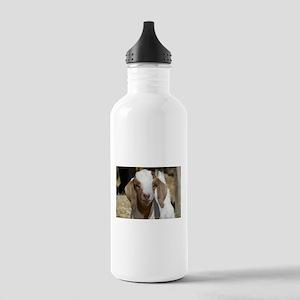 Cutie Kid Goat Stainless Water Bottle 1.0L