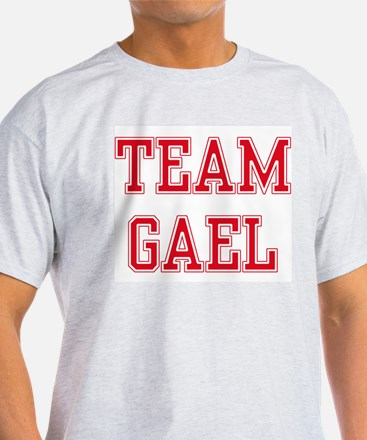 TEAM GAEL  Ash Grey T-Shirt