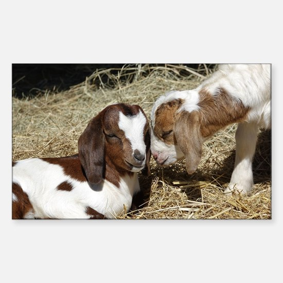 Cute Baby goat Sticker (Rectangle)