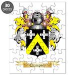 Champney Puzzle