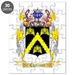 Challinor Puzzle